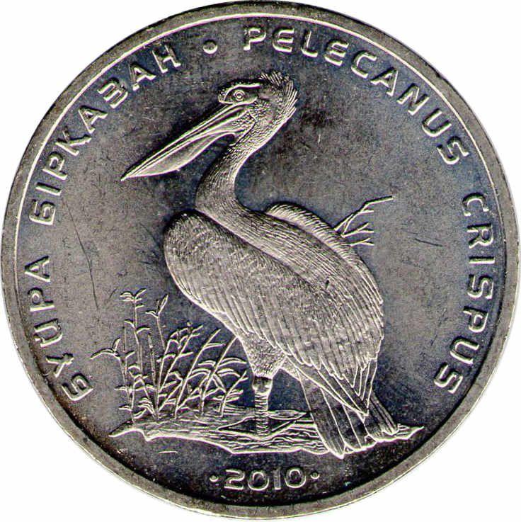 """Монета """"Кудрявый пеликан"""""""