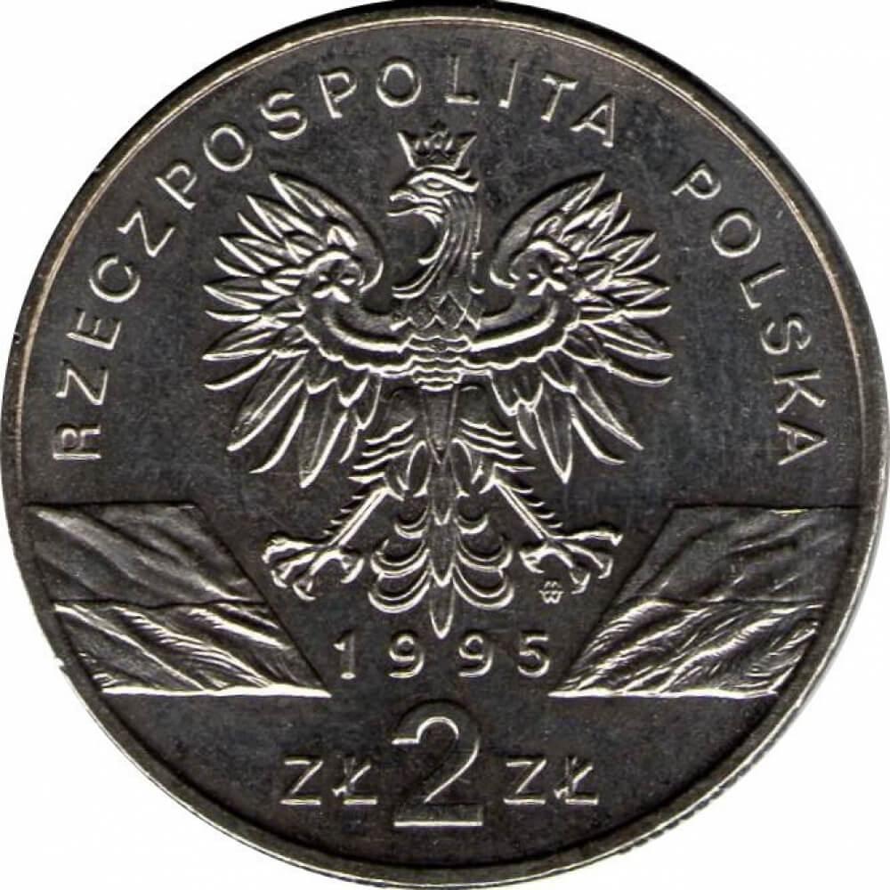 Монета 2 злотых 1995 цена красная книга описание монет
